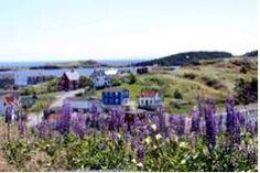 Ostkanada Reisen nach Neufundland