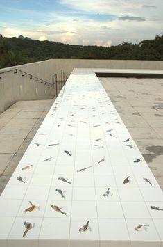 Inhotim Centro de Arte Contemporânea. Pavilhão de exposição permante, 2008 Adriana Varejão