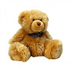 Connaissez-vous l'histoire de l'ours en peluche