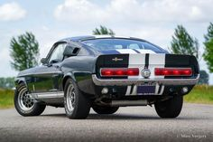 Ford Mustang Shelby GT 500, 1967 - Classicargarage - FR Ford Mustang Shelby Gt, Shelby Car, Shelby Gt500, Mustang Cars, Ford Gt500, Old Muscle Cars, American Motors, Real Men, Mustangs