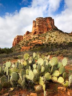 Travel to Sedona, Arizona for a unique mini-moon adventure that blends wellness with exploration. When you're not checking out red-rock canyons, explore the city's rich culture.