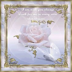 May 2020 - Cards for everyone! See more ideas about Happy birthday quotes, Happy birthday images and Birthday messages. Rose Poems, Sympathy Quotes, Sympathy Messages, Grieving Quotes, Every Rose, Always Thinking Of You, Birthday Blessings, My Champion, Memories Quotes