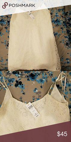 BCBG SHIFT DRESS (LACE) Sz S BCBG LACE SHIFT DRESS BNWT BCBG Dresses Midi