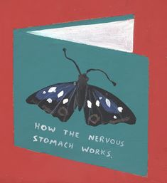 so much anxiety about so many things. I stopped worrying about life and most of the butterflies are gone.