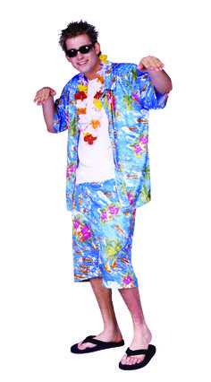 Awesome Costumes Hawaiian Costume just added...