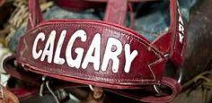 & Roper Stetson Tin Haul Calgary Stampede Day 1 Recap with Arnie Jackson Tin Haul, Community Organizing, City Scene, Community Events, Calgary, Zip Around Wallet, Jackson, Cowgirls, Preserves