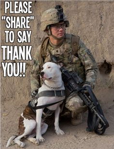 Heroes!   All about #dogs #cats here, check it out