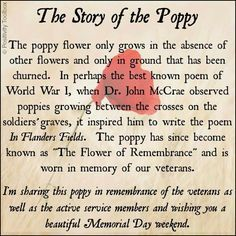 Poppy flower quotes google search poppies pinterest discover and share poppy veterans day quotes explore our collection of motivational and famous quotes by authors you know and love mightylinksfo