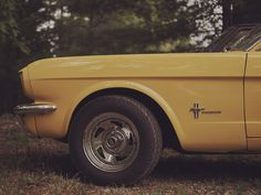 NEIL BEDFORD | PHOTOGRAPHER - COWAN CARS, 2016