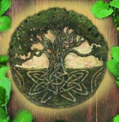Celtic Mythology Tree -- looks kind of the like the symbol for the Knights of Athena...