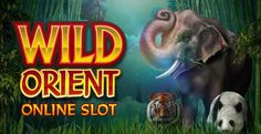casino slot games for pc free