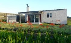 Vaalvlei farm near Stanford in the Overberg has self catering accommodation - aloe and arum lily - and flyshing for rainbow trout, brown trout, bass, tilapia, blue kurper. Brown Trout, Rainbow Trout, Fly Fishing, South Africa, To Go, Places To Visit, Cottage, Outdoor Decor, Trout