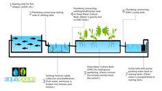 free-aquaponics-plans-2