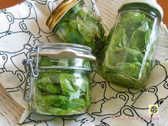 Keep basil oil Pesto Dip, Arancini, Home Canning, Romanian Food, Pots, Edible Gifts, Preserving Food, Canning Recipes, Antipasto