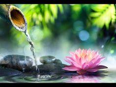 Música Zen de meditación, Música Relajante, Música para Reducir Estres, Música de Fondo, ☯2936 - YouTube