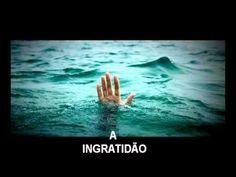 A INGRATIDÃO ( LINDA REFLEXÃO DE VIDA )