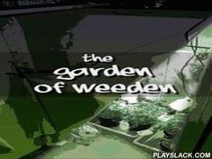 Garden Of WEEDen  Android Game - playslack.com , acknowledgments to this exclusive game, you will be able to grow up cannabi, without having difficulties with the collection. Quite fascinating and informative. purchase fruits, water a plant, fertilize the object, look after your plant and work of it and you will be awarded  by an enormous plant. crops which you grow up, can be sold to other players in actual time.