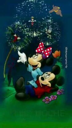 Good Morning Flowers Gif, Good Night Flowers, Good Morning Beautiful Images, Cute Good Night, Good Night Gif, Good Night Sweet Dreams, Good Night Greetings, Good Night Messages, Good Night Wishes