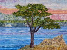 Detail of Lone Cypress Tree  cathygeier.com