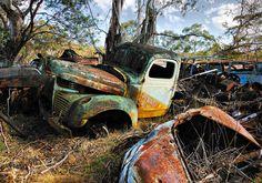Old Rusty truck-Art Vintage Trucks, Old Trucks, Junkyard Cars, Automobile, Rust In Peace, Rusty Cars, Truck Art, Old Tractors, Abandoned Cars