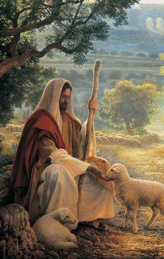 Chapter 'Feed My Sheep' Jesus Christ Painting, Jesus Art, Lds Art, Bible Art, Jesus Shepherd, Pictures Of Jesus Christ, Padre Celestial, Christ The Redeemer, Fantasy Art Landscapes