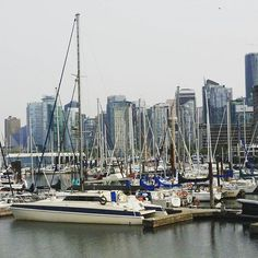 Skyscrapers of land and sea #vancouverbc