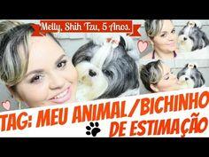 Tag: Meu Animal/Bichinho De Estimação (Melly, SHIH TZU, 5 Anos) - Lói ...