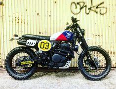 Dominator Scrambler, Scrambler Motorcycle, Bobber, Honda Motorcycles, Custom Motorcycles, Custom Bikes, Cafe Bike, Cafe Racer Bikes, Japanese Motorcycle