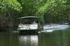 """Black River Safari And YS Falls tours from Montego Bay Discover the many surprises held by a seemingly """"Black River"""" and chill with the locals at a relaxation spot, surrounded by water, located approximately 1/4 miles out at sea.From your hotel in Montego Bay you will be taken to the Black River for a safari followed by a trip to the renowned Y.S. Falls. The tour begins with the sightseeing of crocodiles at the Black River, guided by one of the many experienced tour boat opera..."""