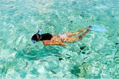Snorkeling Tour, Enjoy Hurghada family Holidays with All Tours Egypt
