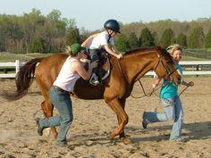 therapeutic riding | Therapeutic Horseback riding at Hazelwild Farm Educational Center ...