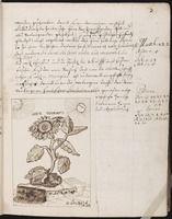Alchemical and Rosicrucian compendium