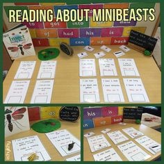Phonic challenge table with a reading focus. Two activities - read and match the small minibeasts and read and velcro the answer.