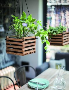 The Best Indoor Houseplants for Low Light And Clean Air + 11 Genius Potting Ideas Diy Hanging Planter, Wood Planters, Planter Ideas, Hanging Pots, Planter Boxes, Hanging Basket Plants, Indoor Plant Hangers, Deco Nature, House Plants Decor