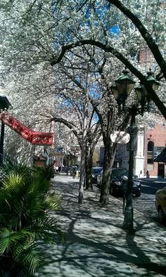Another picture of College Street in New Haven, CT.  This was in March 2012.