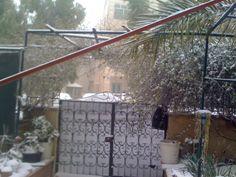 #snowjo this morning