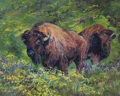 "A pair of American Bison graze green pastures sprinkled with Texas wildflowers in Roaming a Land of Plenty | enhanced PRINT 8x10 1/1 by Lindy Cook Severns | $100 | 10""w x 8""h 
