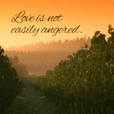 Love is not easily angered. http://tru4.us/Mg3E