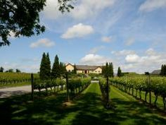 Mother-Daughter culinary tour in the Hamptons | Wölffer Estate Vineyard | Winery & Vineyard