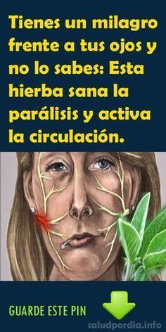 Tienes un milagro frente a tus ojos y no lo sabes: Esta hierba sana la parálisis y activa la circulación. #ojos #hierba #parálisis #salud
