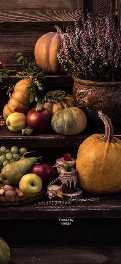 Turkey Hill, Onion, Thanksgiving, Shades, Autumn, Vegetables, Fruit, Halloween, Food