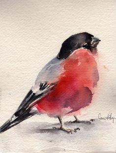Bullfinch Bird Painting Original Watercolor Painting by CanotStop