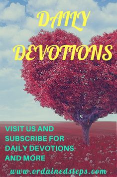 77b3c3135 Grow in your relationship with God by reading daily devotions and  meditating daily on His precepts.