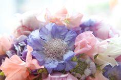 Stunning pastel flowers - Image by Julia Boggio Studios