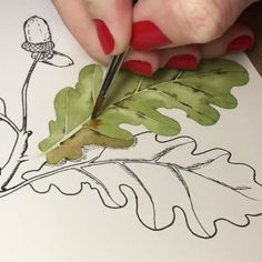 Watercolor of leaf Watercolor Projects, Watercolour Tutorials, Watercolor Techniques, Watercolor Cards, Watercolor Flowers, Botanical Art, Botanical Illustration, Watercolor Illustration, Painting & Drawing