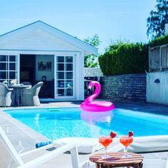 Pools, Oasis, Swimming, Water, Outdoor Decor, Swim, Gripe Water, Swimming Pools, Ponds