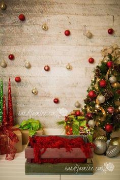 Image result for christmas mini session setup