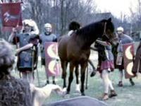 Romeinen in ons land - schooltv Roman History, Roman Empire, Horses, School, Animals, Classroom, Class Room, Animales, Animaux