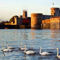 King John's Castle   County Limerick, Ireland