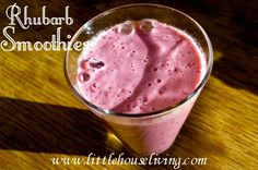Rhubarb Smoothies (And how to harvest rhubarb)